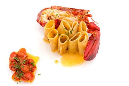Paccheri pasta with lobster